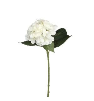 "Hydrangea white - 20"""