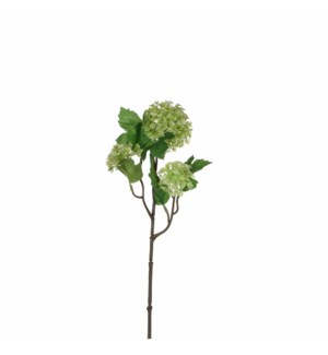 """Viburnum green  - 18"""""""