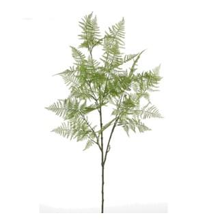 """Asparagus green  - 47.25"""""""