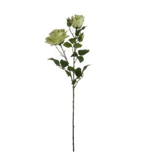 "Rose green  - 33.5"""