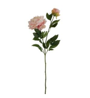 "Peony l. pink - 24.5"""