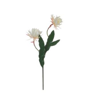 "Cactus flower pink - 47.25"""