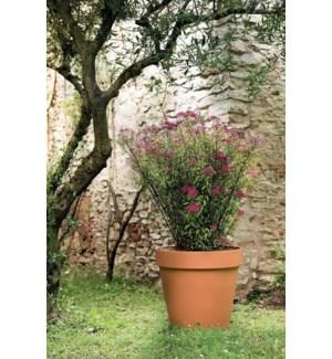 39cm Standard Pot
