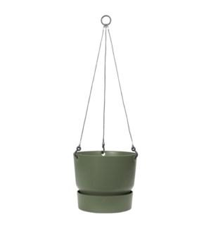 greenville hanging basket 24cm leaf green