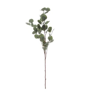 "Eucalyptus green - 36.75x9.5x5.5"""