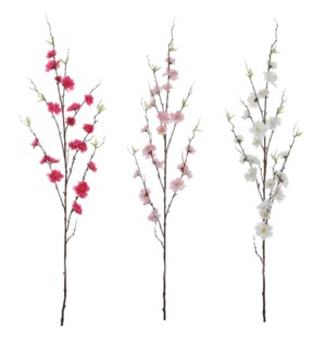 Cherry blossom cream pink d. pink 3 assorted - 49.25""