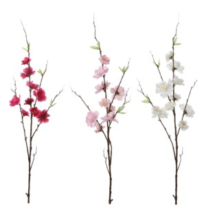 Cherry blossom cream pink d. pink 3 assorted - 27.5""