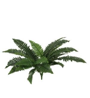 Boston fern green - l60xw40xh15dcm