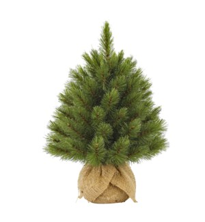 """Forest frosted xmas tree w burlap green TIPS 61 - 14.25x18"""""""