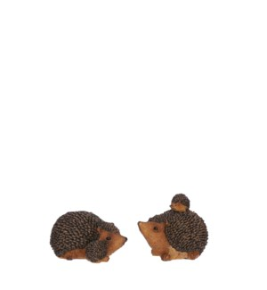 "Hedgehog brown 2 assorted - 4x2.5x2.25"""