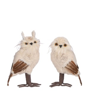"Owl white 2 assorted - 6x5.5x11.5"""