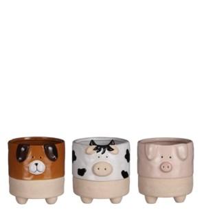 "Pot dog cow pig 3 assorted display - 5.5x5.25x6"""