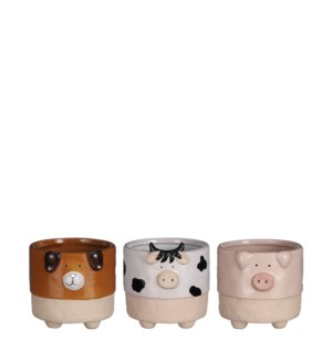 "Pot dog cow pig 3 assorted display - 4.75x5x4.25"""