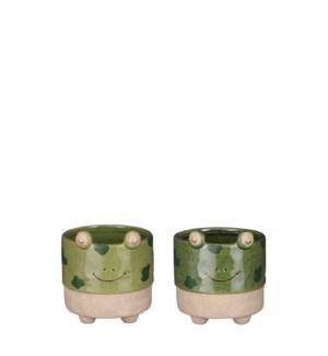 "Pot frog green d. green 2 assorted display - 4.75x5"""