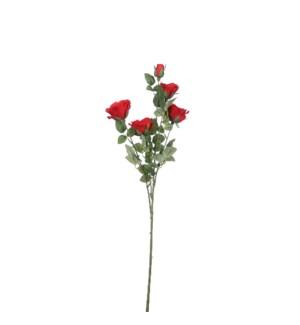 "Rose red - 28.75"""