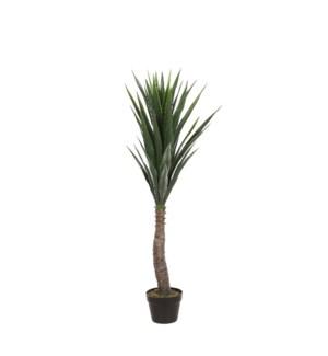 """Yucca in pot green waterproof & UV resistant - 23.75x47.25"""""""