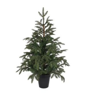 "Frasier xmas tree green TIPS 475 - 30""x3.25'"