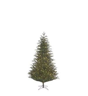 "Frasier xmas tree led green 168L TIPS 890 - 37""x4'"