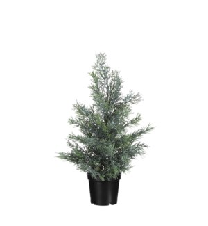 """Cedar tree l. green - 3.75x15.75"""""""