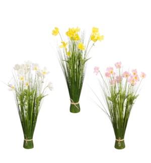 "Daisy bundle yellow pink white 3 assorted - 23.75x12.25x3.5"""