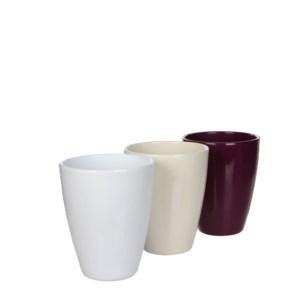 Indoor pots displays & mixpall