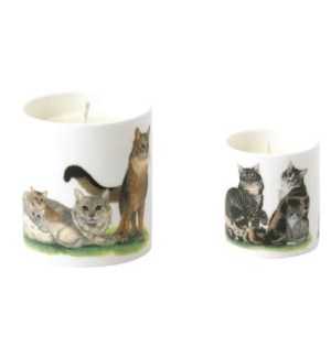 Cat Collection Small Candle Set