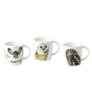 Owl Sophie Mug Set