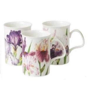 Iris Lancaster Mug Set