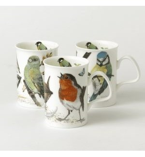 Garden Birds Lancaster Mug Set