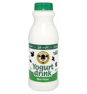 Karoun Yogurt Drink MINT 24/1 pt