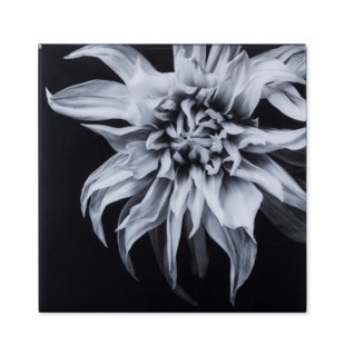 Black & White Flower - Epoxy / F
