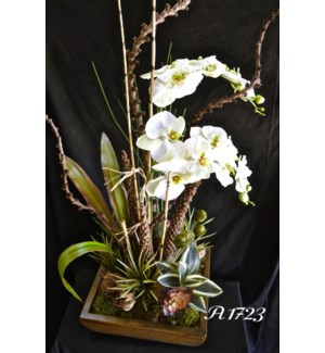 ORCHIDS & LADDER BRANCH CENTERPIECE