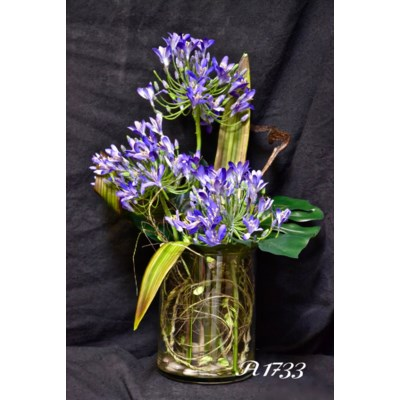 AGAPANTHUS & CYMBIDIUM IN WATER