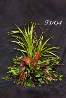 REPENS, FEATHERS & PODS TILE TOPPER