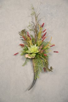 DRAGON FERN & SUCCULENTS WALL HORN
