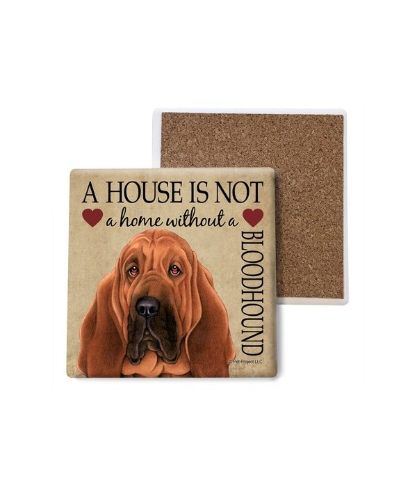 A house is Not a home without a Bloodhou