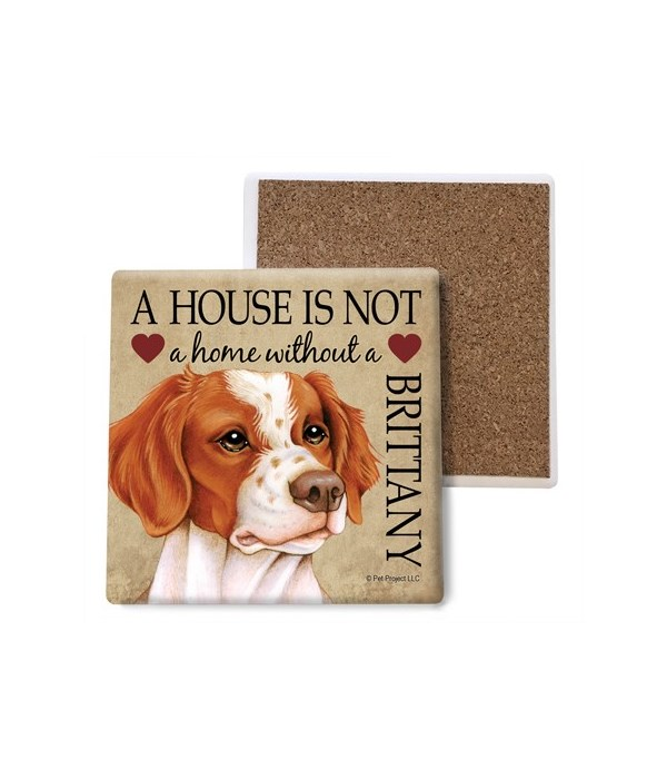 A house is Not a home without a Brittany