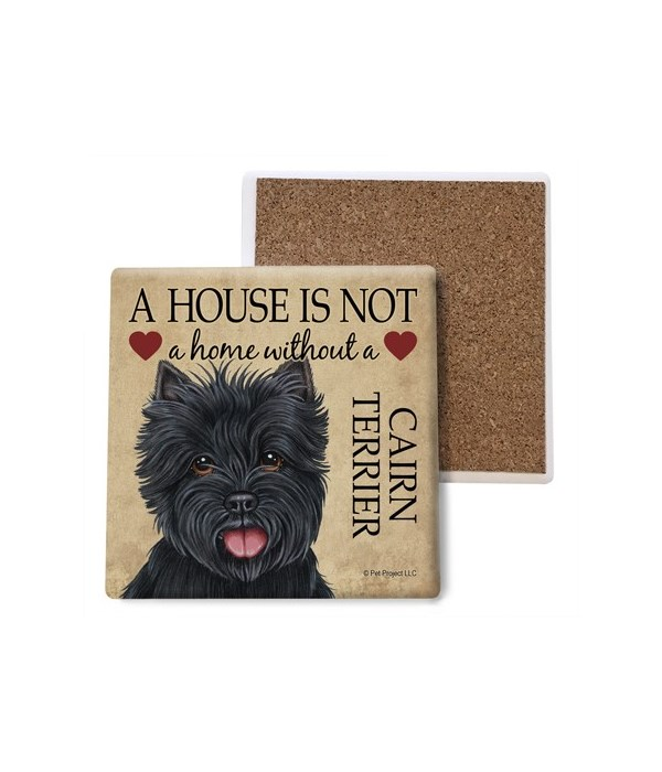 A house is Not a home without a Cairn Te