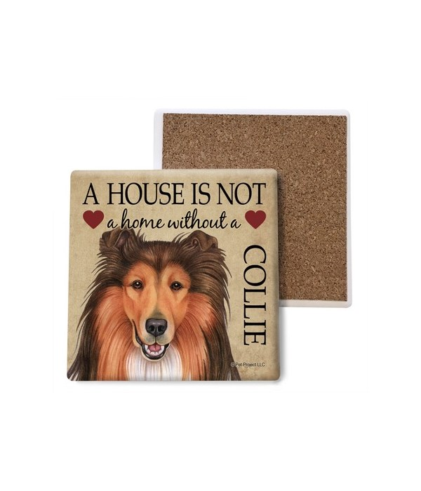 A house is Not a home without a Collie c