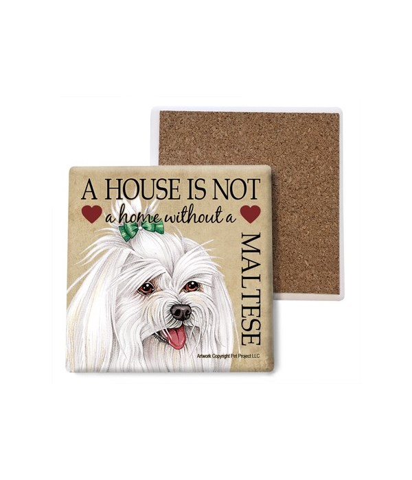 A house is Not a home without a Maltese