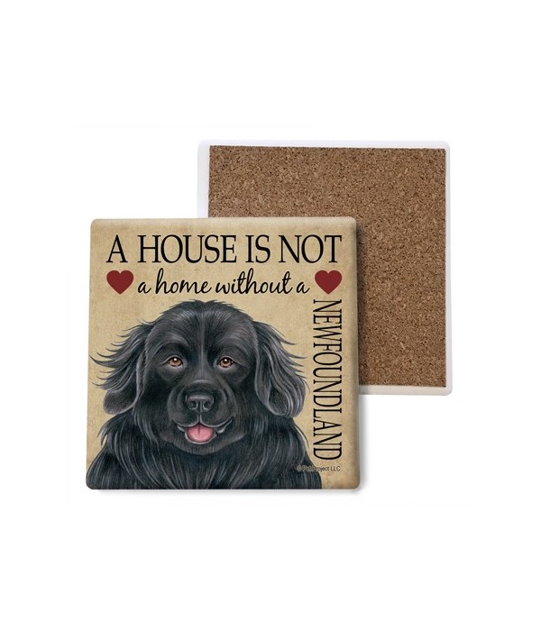 A house is Not a home without a Newfound