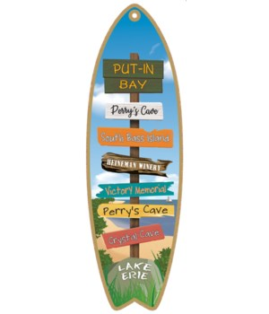 Destination Lake Beach Surfboard
