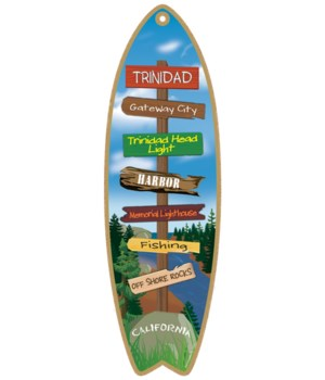 Destination River Surfboard