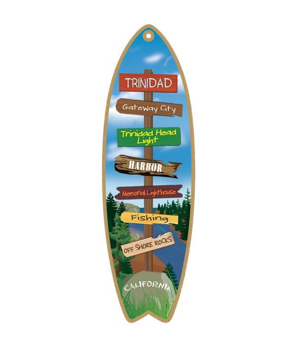 Destination River Surfboard
