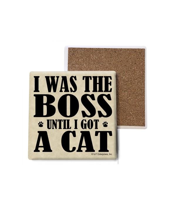 I was the boss until I got a cat