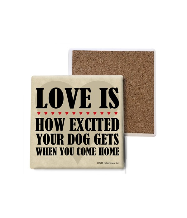 Love is how excited your dog gets when y