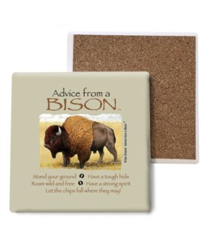 Advice from a Bison coaster bulk