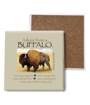 Advice from a Buffalo coaster bulk
