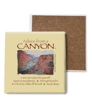 Advice from a Canyon coaster bulk