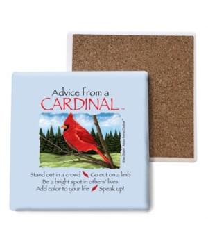 Advice from a Cardinal coaster bulk